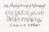 Washington - A Handwritten SVG Script Font example image 19
