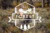 Vintage Forest Moose Badge example image 1