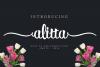 Alitta example image 2