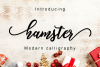 Hamster Script example image 1