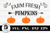Farm Fresh Pumpkins 3 SVG | PNG | DXF | EPS example image 1
