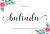 balinda example image 1