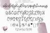 Beautiful Awakening - A Serif & Script Font Duo example image 7