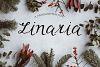 Linaria Font example image 1