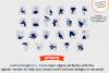 Feya's Best-Selling Craft Fonts Bundle example image 4