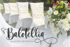 Sibertha - Font Duo - example image 7