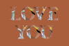 Flora Font example image 14