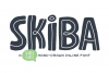 Skiba Font example image 1