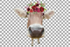 Not today Heifer printable floral burgundy decor, floral cow example image 12