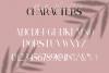 Marillia Vion - Font duo example image 14