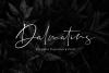 Dalmatins // Elegant Signature Font example image 1