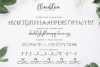 Flowerbloom Font Trio example image 11
