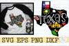 Texas State Pride example image 1