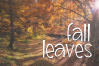 Scarecrow - A Handwritten Font example image 5