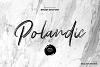 Polandic SVG Brush Font example image 1