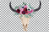 Watercolor Floral Bull Skull clip art with anemone and roses example image 2