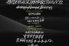 Jaeggers - Rough Script example image 11
