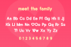 Lovebirds Font example image 4