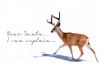 Under the Mistletoe - Handwritten Script Font example image 4