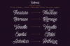 Bellonion Monoline Script example image 3
