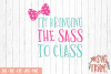 Im Bringing The Sass To Class SVG Cut File SVG DXF PNG EPS example image 1