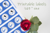 Blue Printable Labels Grade Party 2019 - size 1.67 inches example image 2