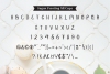 Sugar Frosting Font Trio example image 9