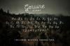 Genuine Script - Textured Type Duo example image 3