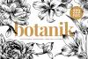 Botanical Illustration Bundle example image 1