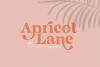 The California - A Serif/Script Handwritten Font Duo example image 11
