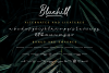 Bluehill - Marker Font example image 12