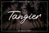 Tangier Script example image 1