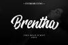 Brentha Bold Script Font example image 1