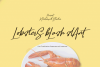 Lobsters Blush Font Duo example image 3