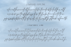 Selvia Font Duo example image 5