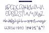 Beach Bum - Handwritten Script Font example image 7
