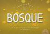 Bosque Typeface example image 1