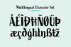 Active Font Family example image 12