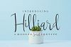 Hilliard example image 2