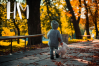 Autumn Collection OTF & SVG Font example image 13