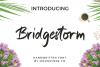 Bridgestorm Handwritten Font example image 1