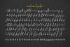 Concetta Kalvani // Signature & Serif example image 11