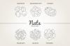 12 Nuts - Illustration & Patterns example image 4