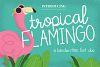 Tropical Flamingo Font Duo example image 1