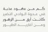 Maharah - Arabic Typeface example image 9