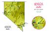 Nevada Maps example image 3