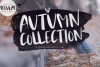 Autumn Collection OTF & SVG Font example image 1