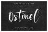 Ostinel SVG Font example image 2