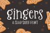 Gingers Slab Serif Font example image 1