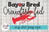 CRAWFISH BUNDLE Boil Cajun SVG Cutting Files example image 2